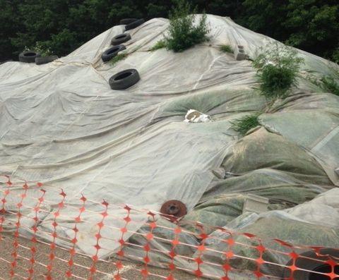 Leddy Park soil pile