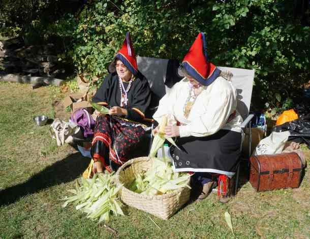 Abenaki seeds
