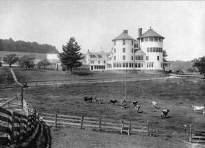 Speedwell Farm