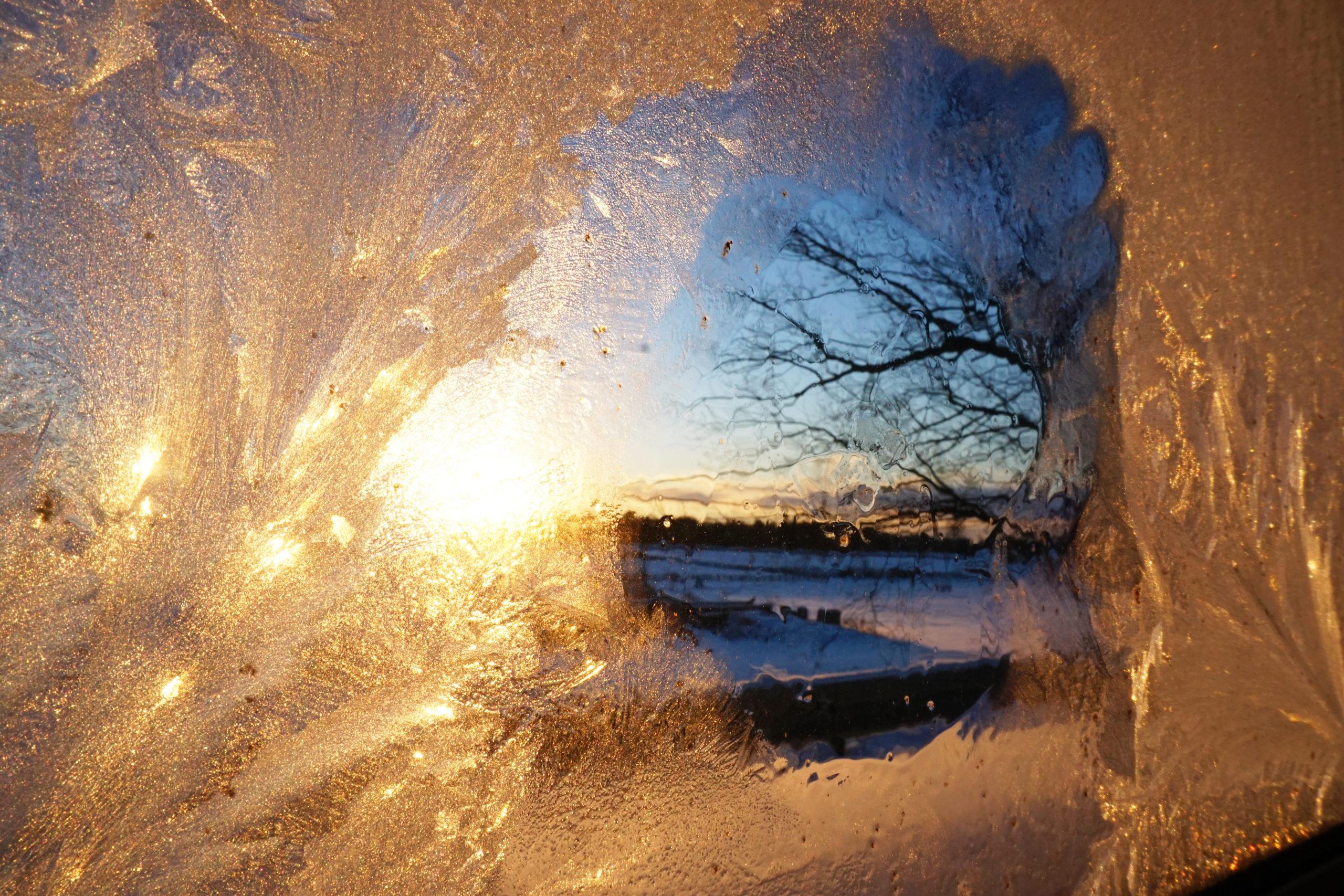 YWP: 'Ice fishing'