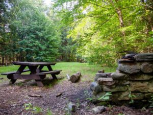 picnic bench in meadow